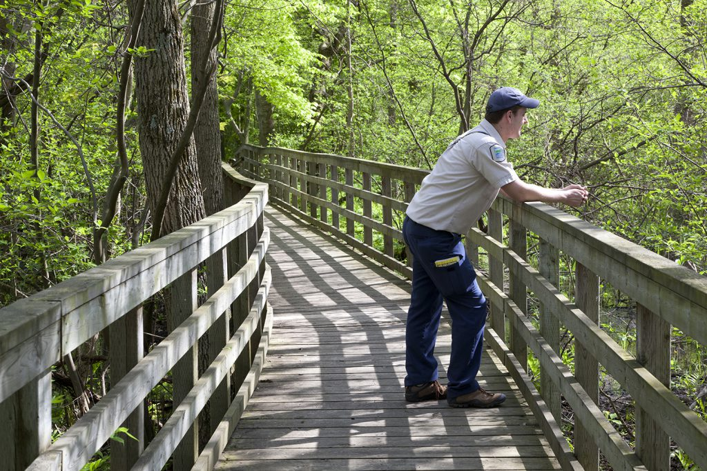 Boardwalk for accessible birding in Rondeau Provincial Park
